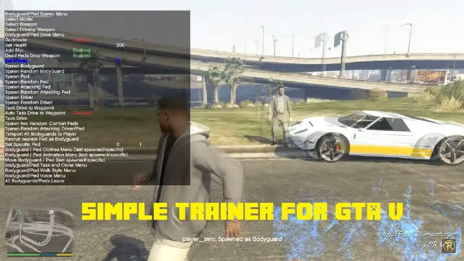Simple Trainer for GTA V Vehicles